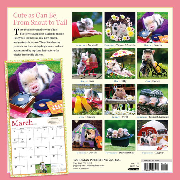Pocket Pigs Calendar