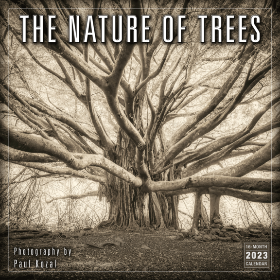 Nature Of Trees Calendar
