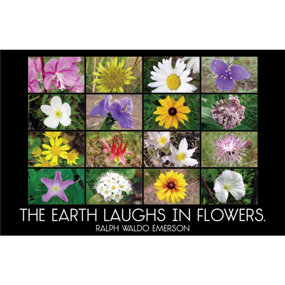 Earth Laughs Emerson Magnet