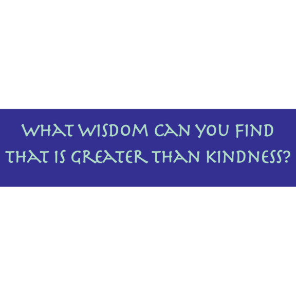 What Wisdom Can You Find Bumper Sticker