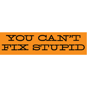Can't Fix Stupid Bumper Sticker