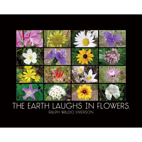 Earth Laughs Emerson 2x3 Magnet