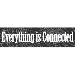 Everything Connected Bumper Sticker