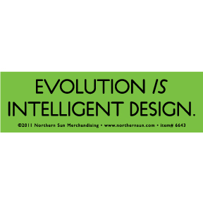 Evolution Intelligent Sticker