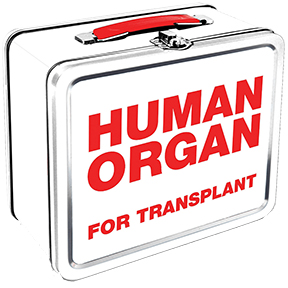 Organ Transplant Lunch Box