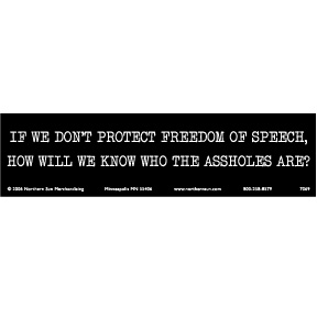 Protect Speech Bumper Sticker