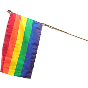 Rainbow Flag on a Stick