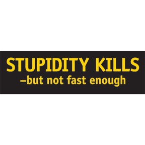 Stupidity Kills Sticker
