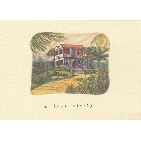 A True Rarity Jane Evershed 4 Note Card Set