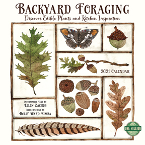 Backyard Foraging Calendar