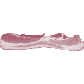 Bacon Strip Bumper Sticker
