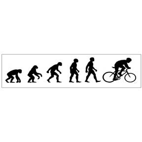 Bike Evolution Sticker