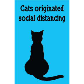 Cats Originated Social Distancing Magnet