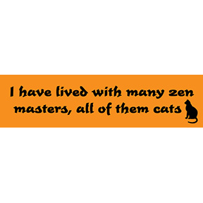 Cats Zen Masters Bumper Sticker
