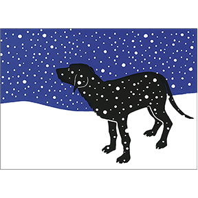 Dog And Snow 12 Note Card Set