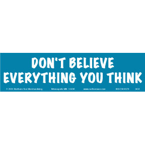 Don't-Believe-Everything-Bumper-Sticker