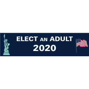 Elect An Adult 2020 Bumper Sticker