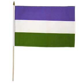 Genderqueer Flag on a Stick
