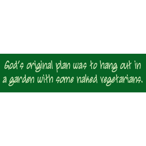 God's Original Plan Bumper Sticker