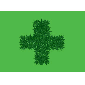 Green Cross Marijuana 2x3 Magnet