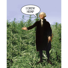I Grew Hemp George Washington 2x3 Magnet