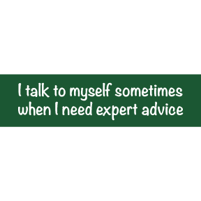 I Talk To Myself Bumper Sticker