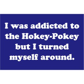 I Was Addicted To Hokey Pokey 2x3 Magnet