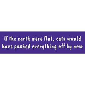 If Earth Were Flat Cats Bumper Sticker