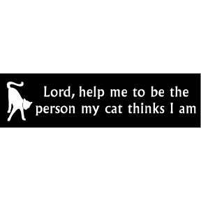 Lord Help Me Cat Bumper Sticker