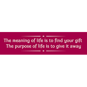 Meaning Purpose Bumper Sticker