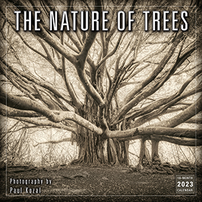 Nature-Of-Trees-Calendar