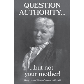 Question Authority Not Mother 2x3 Magnet