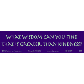 What-Wisdom-Can-You-Find-Bumper-Sticker