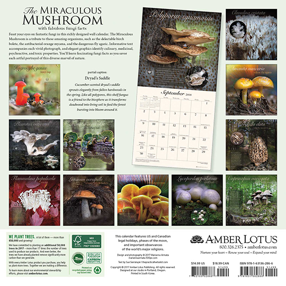 Miraculous Mushrooms Calendar