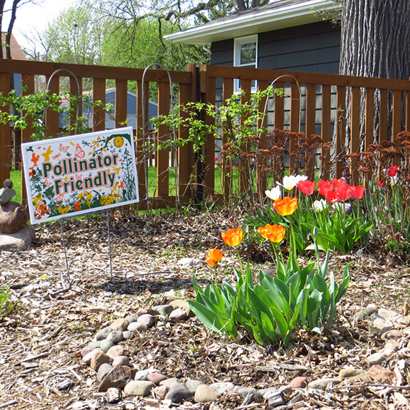 Pollinator Friendly Sign GONE